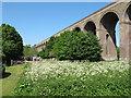 TL8928 : Chappel Viaduct by Roger Jones