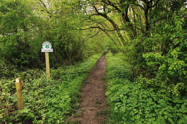 Footpath entrance to Badbury Wood