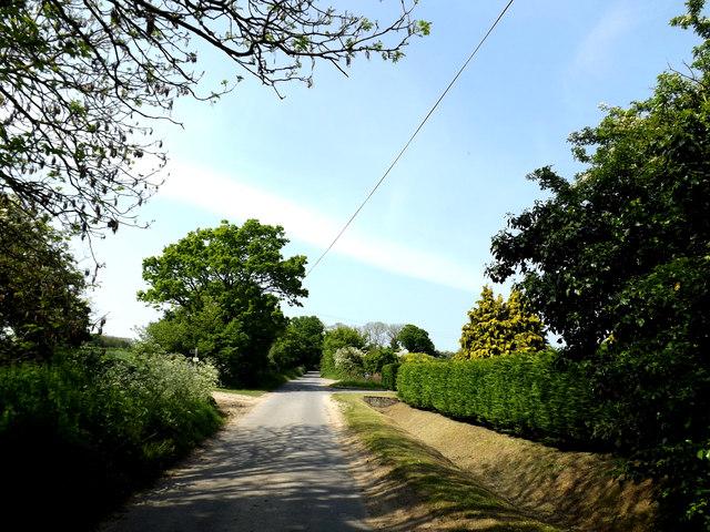 Cucumber Lane, Weston