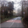 SO5100 : Start of the 30mph maximum speed zone at the western edge of Tintern by Jaggery