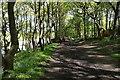 SE1936 : Leeds Country Way near Greengates by Ian S