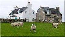NM1253 : Crossapol Farm by Rude Health
