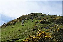 SD6592 : The Sedbergh Gala Fell Race by Bill Boaden