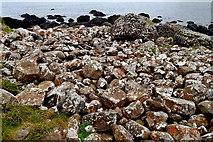 C9444 : County Antrim - Giant's Causeway - Rocks along Port Noffer Coast by Suzanne Mischyshyn