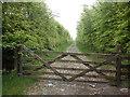 SS6944 : Track to Roe Barrow by Roger Cornfoot