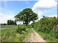 SP7503 : New Close Farm Road by Des Blenkinsopp