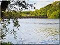 SJ5298 : Carr Mill Dam and Nineteen Arches Bridge by David Dixon