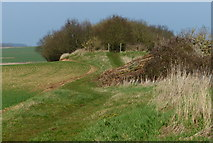 TF0611 : Public bridleway approaching a small patch of woodland by Mat Fascione