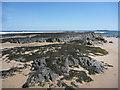 NU1934 : Coastal Northumberland : Islestone Rocks, Bamburgh by Richard West