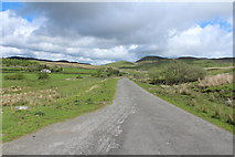 NX6060 : Road to Laurieston near Laghead by Billy McCrorie