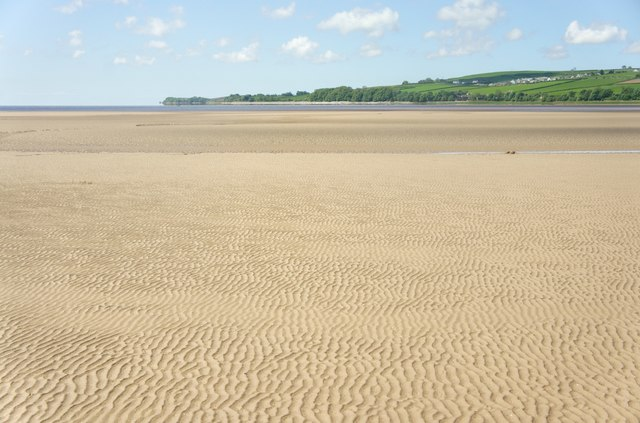 Sand flat in the intertidal zone