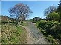 NS5282 : West Highland Way near Quinloch by Lairich Rig