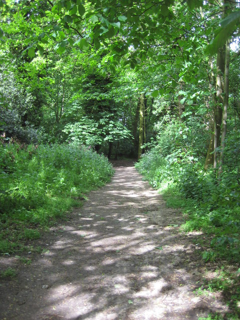 While you can (1): path to Kenton Hills