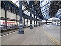 TQ3104 : Pillars at Brighton Station by Paul Gillett