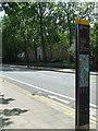 TQ2878 : Chelsea Bridge by Thomas Nugent