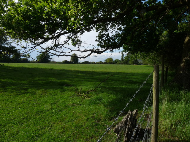 """While you can (10): Upper Abbey """"Front Meadow"""""""