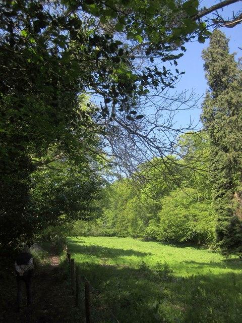 Field near Yarner