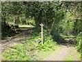 SX7877 : Junction on Templer Way by Derek Harper