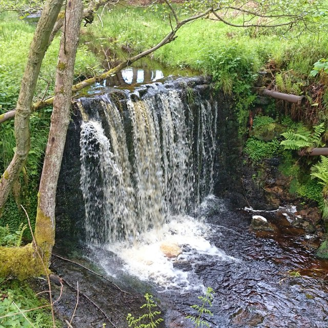 Cartington Waterfall