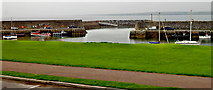 G7157 : County Sligo - Mullaghmore Peninsula Harbour by Suzanne Mischyshyn