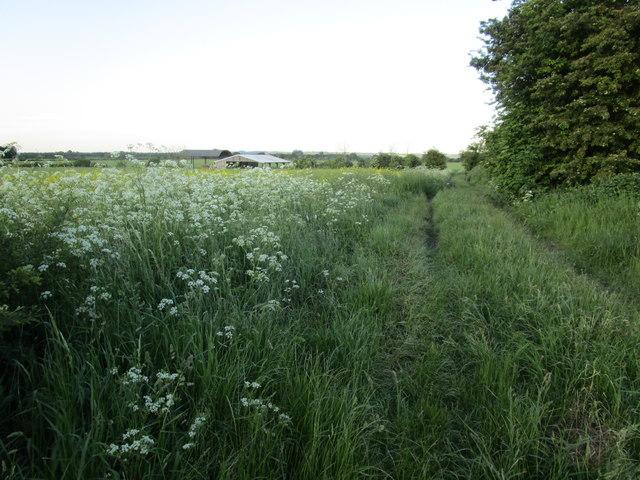 Bridleway to Doddington Littlegate