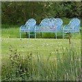 SP5241 : Seats by the Willow Pond, Thenford Arboretum by David P Howard
