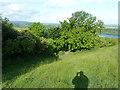SP9513 : A corner of downland by Robin Webster
