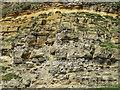 TA0589 : Kittiwake perches, Castle Cliff by Pauline E