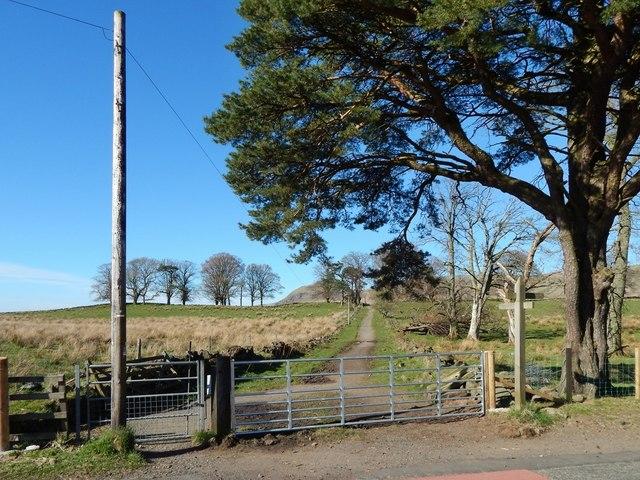 West Highland Way at Easter Carbeth