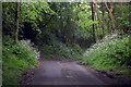 TR0049 : Church Lane by J.Hannan-Briggs