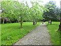 SJ9097 : Fairfield, gardens by Mike Faherty