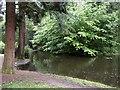 ST5577 : Lily Pond, Blaise Castle Estate by Derek Harper