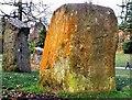 SS6292 : Gorsedd Circle, Singleton Park by Alex McGregor