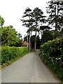 TM1273 : Church Lane, Yaxley by Geographer