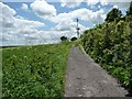 ST9952 : Russell Mill & Strawberry Hill Walk [39] by Christine Johnstone