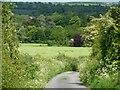 SU0052 : Russell Mill & Strawberry Hill Walk [50] by Christine Johnstone