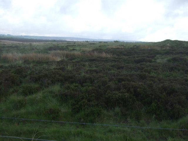 Moorland, Bole Hill
