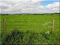 H2081 : Magheranageeragh Townland by Kenneth  Allen