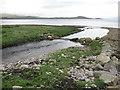 NR5368 : Abhainn a'Mhinisteir joining the Sound of Jura by M J Richardson