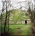 TL5844 : Bartlow Hills in 1988 by Clint Mann