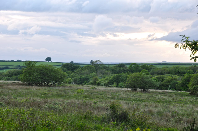 North Devon : Hares Down