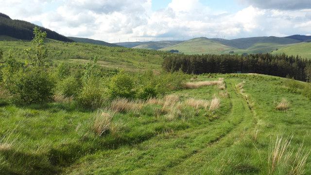 Track descending Seamab Hill