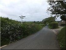 SX6296 : Church Hill Cross by David Smith