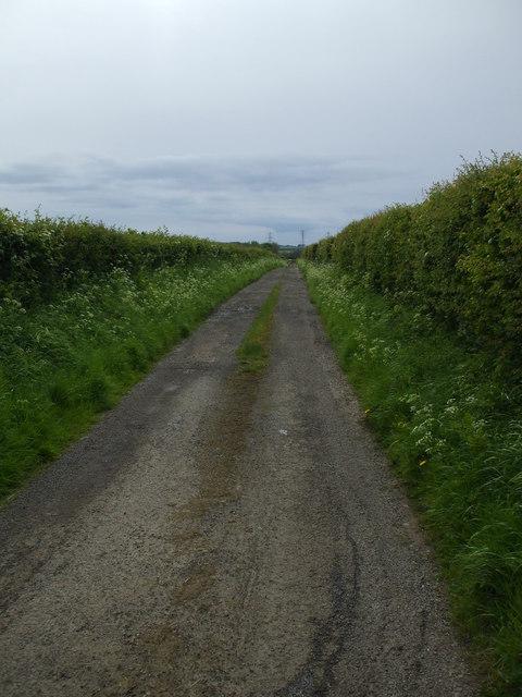 Farm track to Homerigg