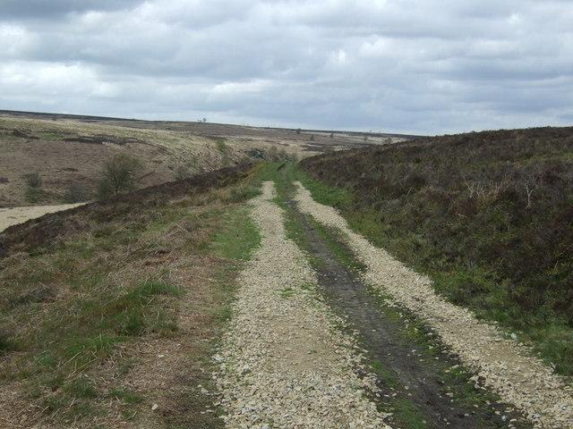 Track over Big Moor