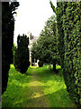 TM0974 : Path to St.Mary the Virgin Church by Adrian Cable