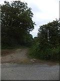 SX6297 : Footpath near Honeycott by David Smith