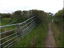 SX6397 : Devonshire Heartland Way near Aller by David Smith