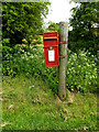 TM0775 : Little Green Postbox by Adrian Cable