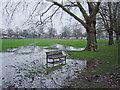 TL4559 : Flooded Jesus Green by Kim Fyson